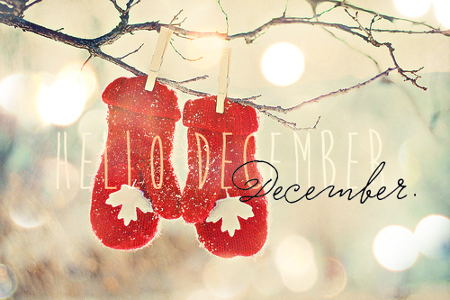 hello-december1